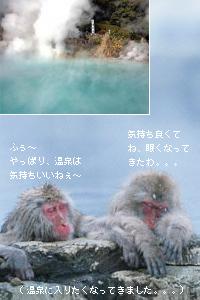 Umi_img04